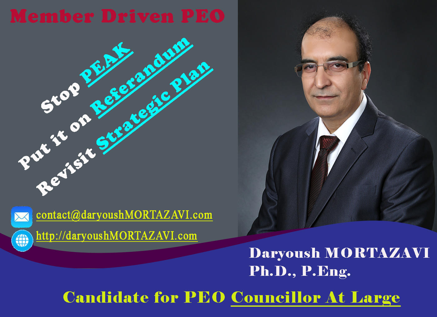 Daryoush Mortazavi-For PEO Councillor At Large